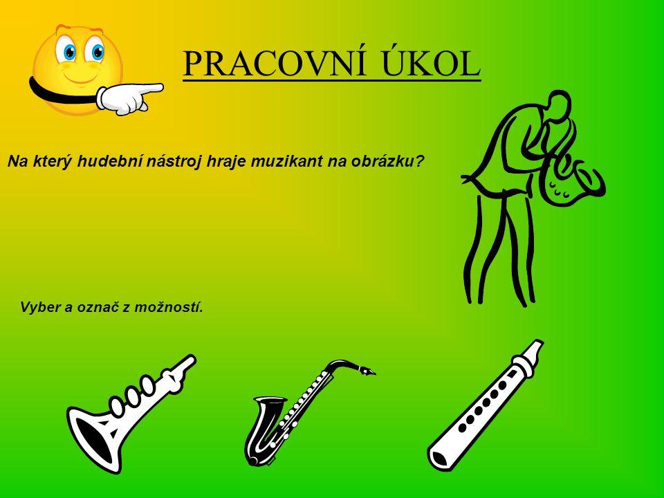 PRACOVNÍ ÚKOL Na který hudební nástroj hraje muzikant na obrázku? Vyber a označ z možností.