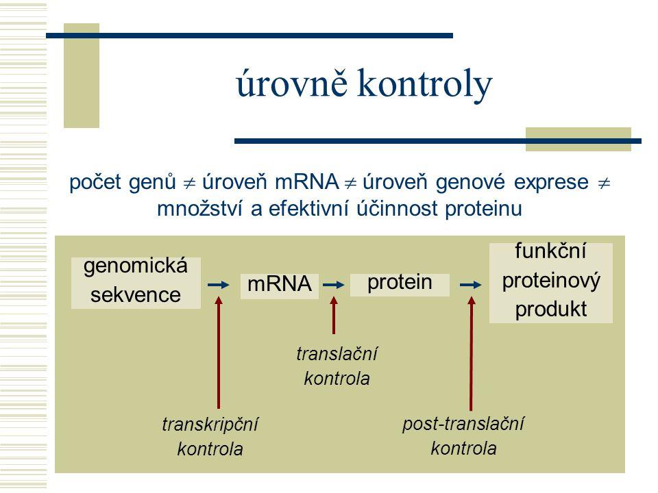 počet genů  úroveň mRNA  úroveň genové exprese  množství a efektivní účinnost proteinu genomická sekvence mRNA protein funkční proteinový produkt transkripční kontrola translační kontrola post-translační kontrola úrovně kontroly