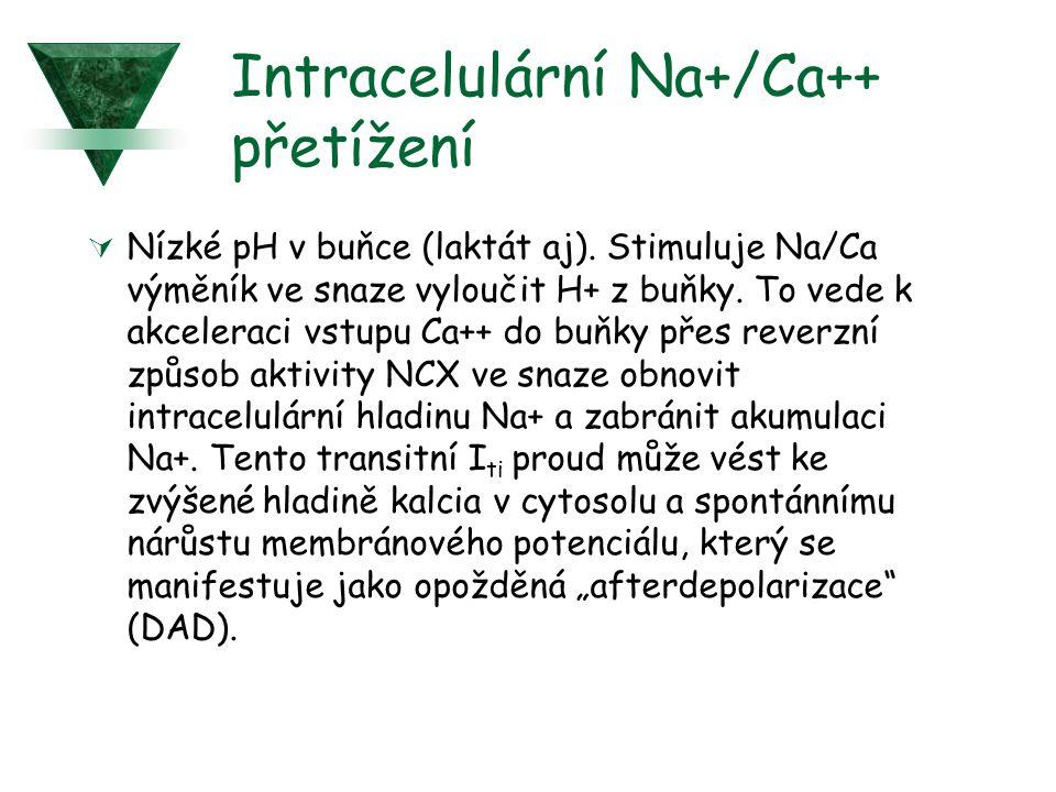 Intracelulární Na+/Ca++ přetížení  Nízké pH v buňce (laktát aj). Stimuluje Na/Ca výměník ve snaze vyloučit H+ z buňky. To vede k akceleraci vstupu Ca