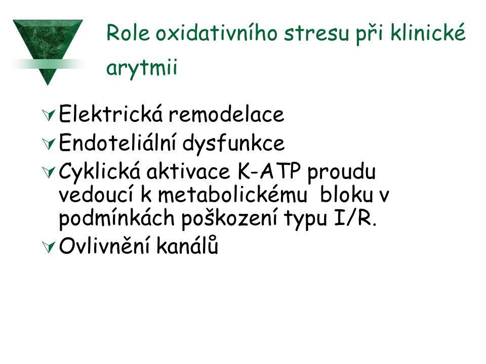 Role oxidativního stresu při klinické arytmii  Elektrická remodelace  Endoteliální dysfunkce  Cyklická aktivace K-ATP proudu vedoucí k metabolickém