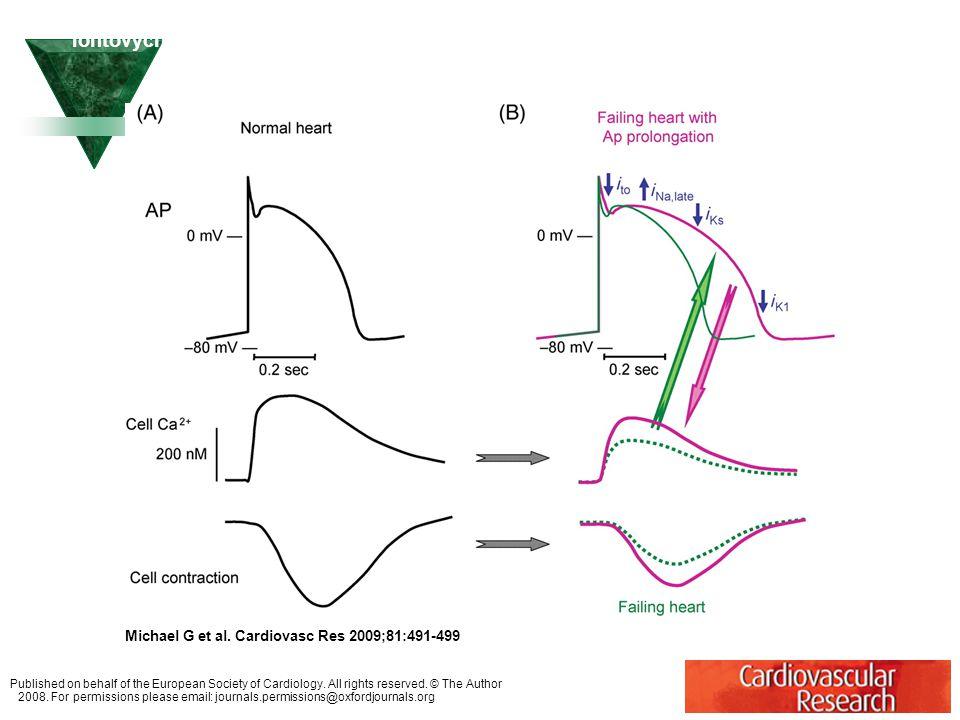 Změny v pohybu Ca2+ a kontraktilitě a potenciální kompenzační funkce remodelace iontových kanálů, které způsobují prolongaci APD u kongestivního srdeč