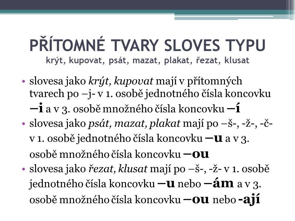 PŘÍTOMNÉ TVARY 3.