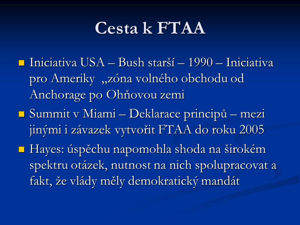 """Cesta k FTAA Iniciativa USA – Bush starší – 1990 – Iniciativa pro Ameriky """"zóna volného obchodu od Anchorage po Ohňovou zemi Iniciativa USA – Bush starší – 1990 – Iniciativa pro Ameriky """"zóna volného obchodu od Anchorage po Ohňovou zemi Summit v Miami – Deklarace principů – mezi jinými i závazek vytvořit FTAA do roku 2005 Summit v Miami – Deklarace principů – mezi jinými i závazek vytvořit FTAA do roku 2005 Hayes: úspěchu napomohla shoda na širokém spektru otázek, nutnost na nich spolupracovat a fakt, že vlády měly demokratický mandát Hayes: úspěchu napomohla shoda na širokém spektru otázek, nutnost na nich spolupracovat a fakt, že vlády měly demokratický mandát"""