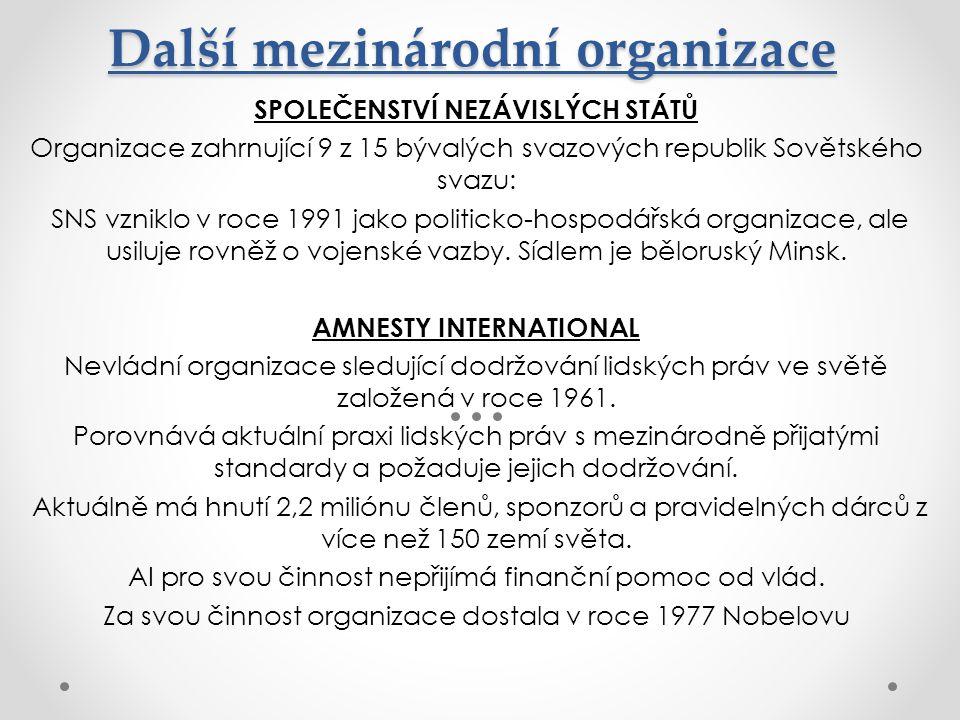 Další mezinárodní organizace SPOLEČENSTVÍ NEZÁVISLÝCH STÁTŮ Organizace zahrnující 9 z 15 bývalých svazových republik Sovětského svazu: SNS vzniklo v r
