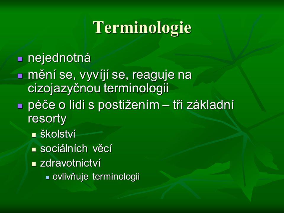 Terminologie nejednotná nejednotná mění se, vyvíjí se, reaguje na cizojazyčnou terminologii mění se, vyvíjí se, reaguje na cizojazyčnou terminologii p