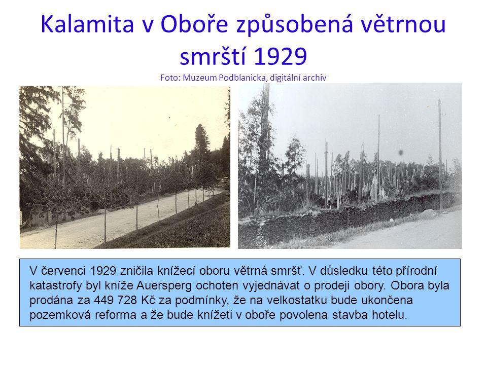 Kalamita v Oboře způsobená větrnou smrští 1929 Foto: Muzeum Podblanicka, digitální archiv V červenci 1929 zničila knížecí oboru větrná smršť.
