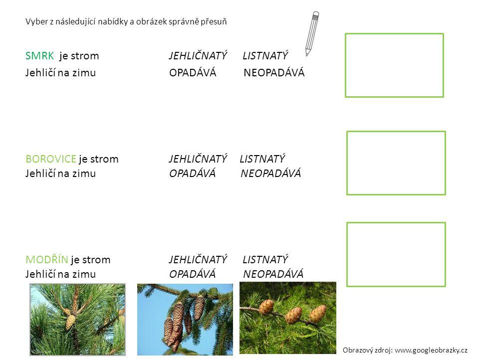 Vyber z následující nabídky a obrázek správně přesuň SMRK je strom JEHLIČNATÝ LISTNATÝ Jehličí na zimuOPADÁVÁ NEOPADÁVÁ BOROVICE je stromJEHLIČNATÝ LI