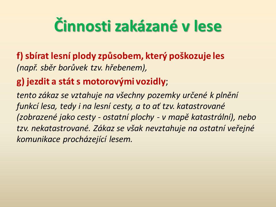 Činnosti zakázané v lese a) rušit klid a ticho.