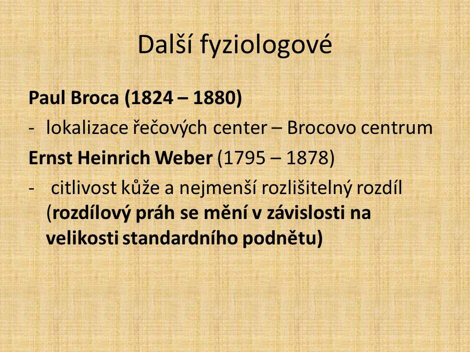 Další fyziologové Paul Broca (1824 – 1880) -lokalizace řečových center – Brocovo centrum Ernst Heinrich Weber (1795 – 1878) - citlivost kůže a nejmenš