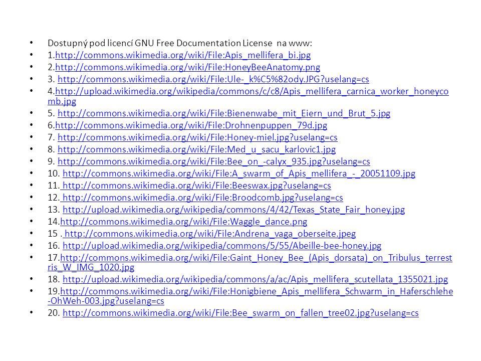 Dostupný pod licencí GNU Free Documentation License na www: 1.http://commons.wikimedia.org/wiki/File:Apis_mellifera_bi.jpghttp://commons.wikimedia.org/wiki/File:Apis_mellifera_bi.jpg 2.http://commons.wikimedia.org/wiki/File:HoneyBeeAnatomy.pnghttp://commons.wikimedia.org/wiki/File:HoneyBeeAnatomy.png 3.