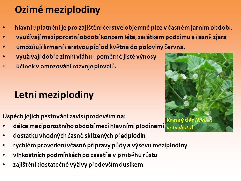 Ozimé meziplodiny hlavní uplatnění je pro zajištění čerstvé objemné píce v časném jarním období. využívají meziporostní období koncem léta, začátkem p