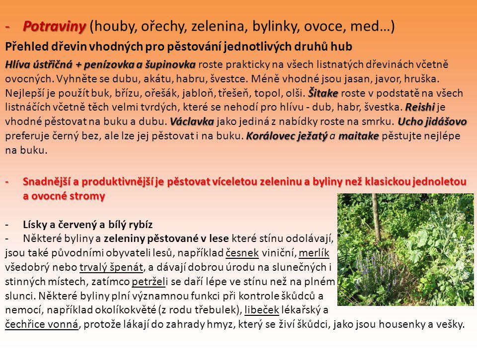 -Potraviny -Potraviny (houby, ořechy, zelenina, bylinky, ovoce, med…) Přehled dřevin vhodných pro pěstování jednotlivých druhů hub Hlíva ústřičná + pe