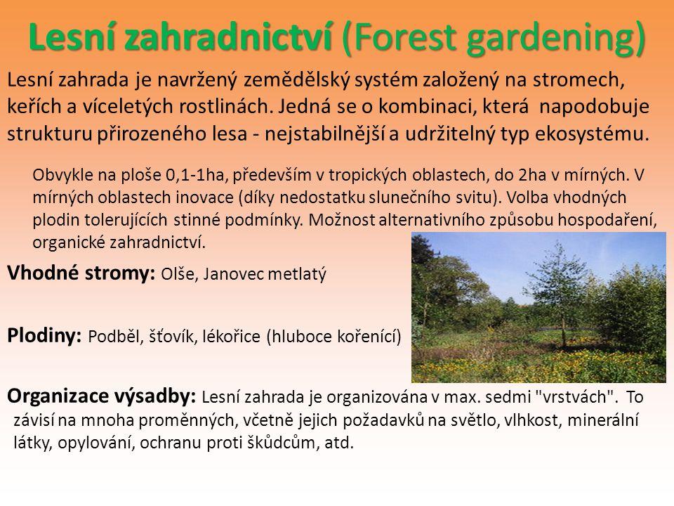 Lesní zahradnictví (Forest gardening) Lesní zahrada je navržený zemědělský systém založený na stromech, keřích a víceletých rostlinách. Jedná se o kom