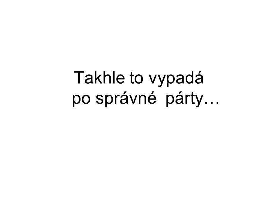 Takhle to vypadá po správné párty…