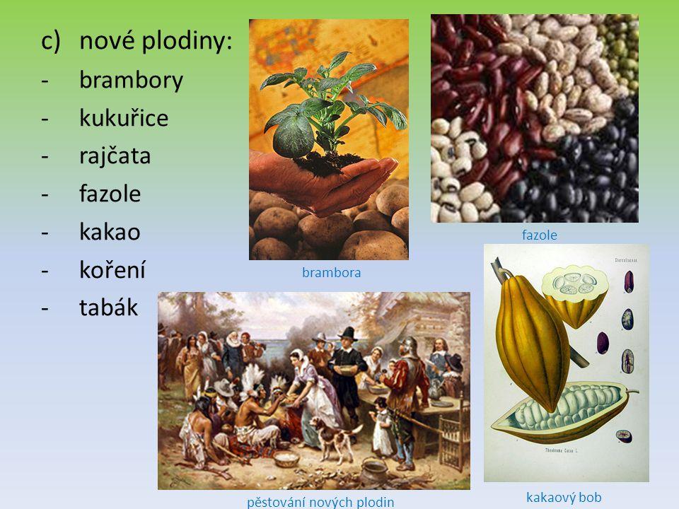 c)nové plodiny: -brambory -kukuřice -rajčata -fazole -kakao -koření -tabák brambora pěstování nových plodin fazole kakaový bob