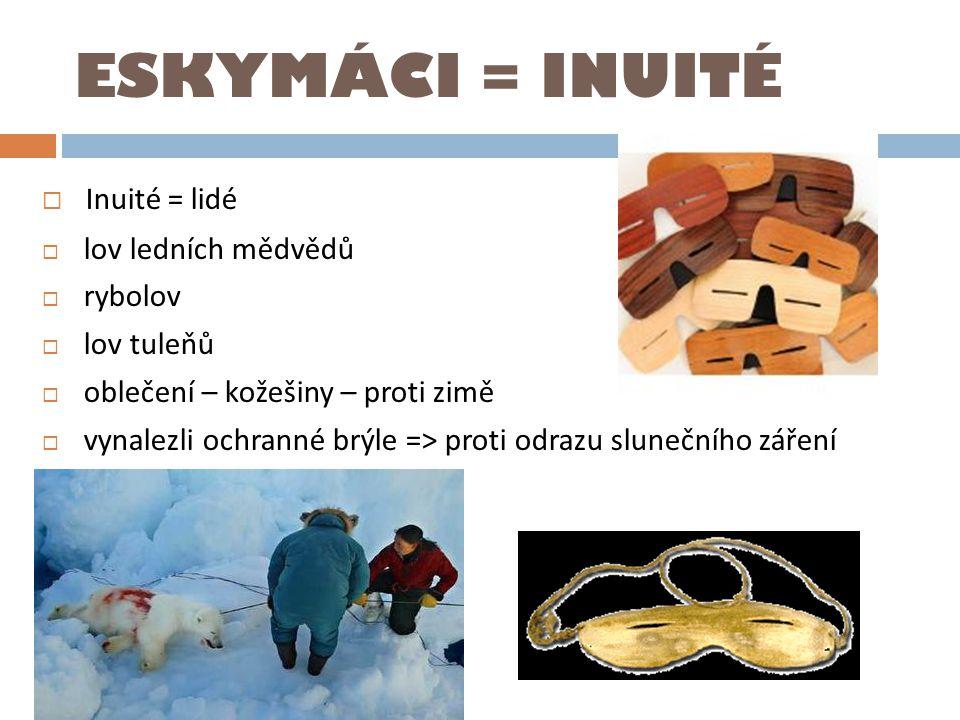 ESKYMÁCI = INUITÉ  Inuité = lidé  lov ledních mědvědů  rybolov  lov tuleňů  oblečení – kožešiny – proti zimě  vynalezli ochranné brýle => proti odrazu slunečního záření
