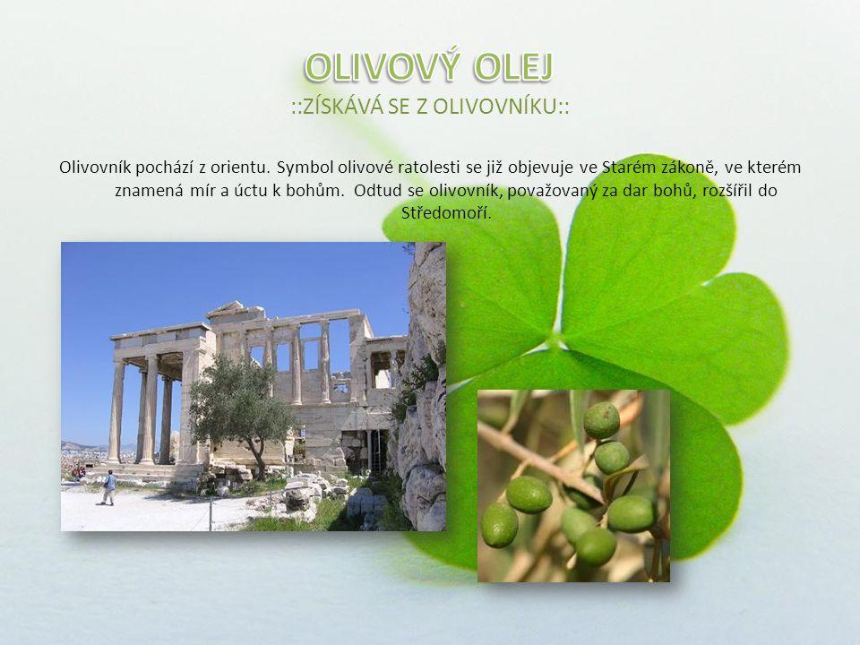 Olivovník pochází z orientu.