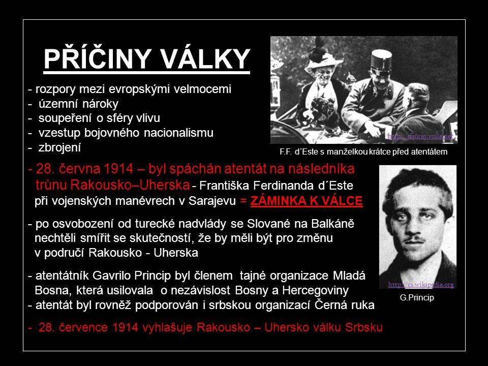 http://www.dailymail.co.uk V letech 1914 - 1918 zachvátila téměř celou Evropu první světová válka. Příčinou byly rozpory silných evropských států. Boj