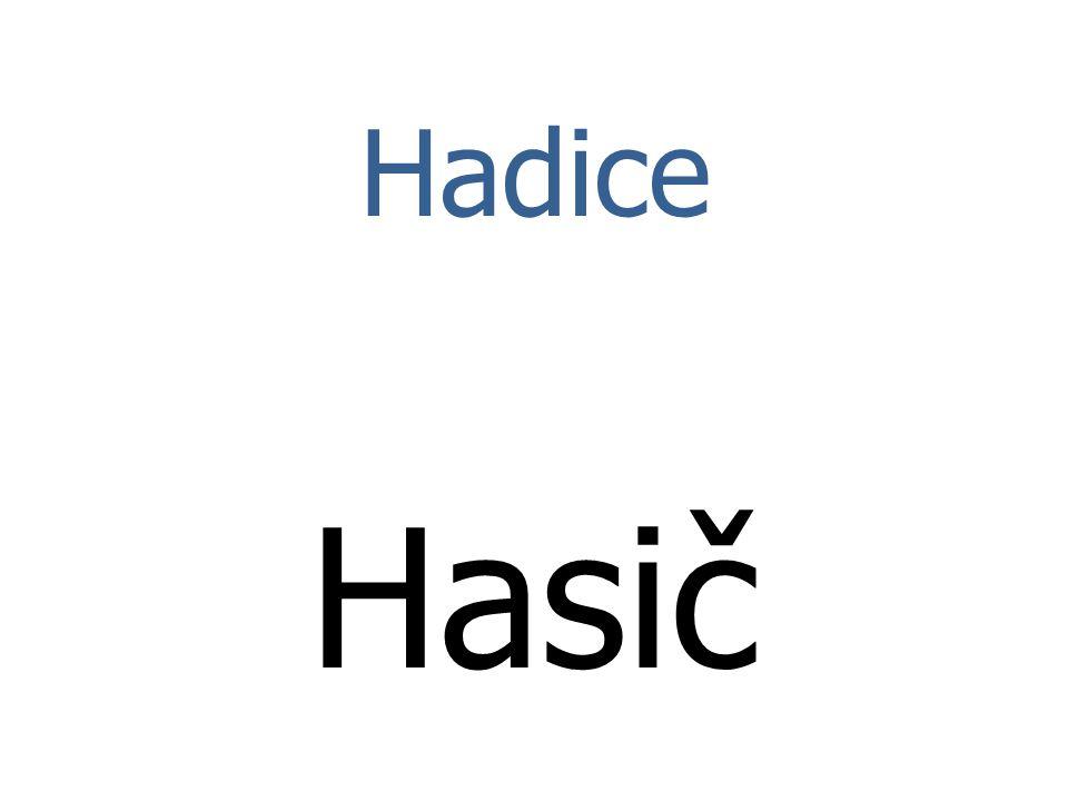 Hadice Hasič