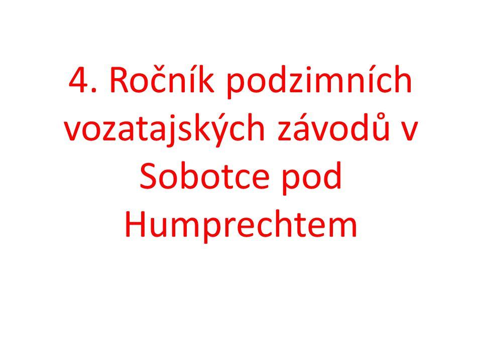 Lada Ondráčková: 3.místo závody spřežení Heřmanův Městec 2012 1.