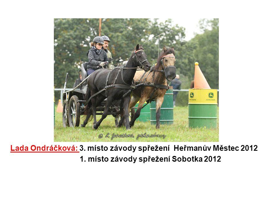Lada Ondráčková: 3. místo závody spřežení Heřmanův Městec 2012 1. místo závody spřežení Sobotka 2012