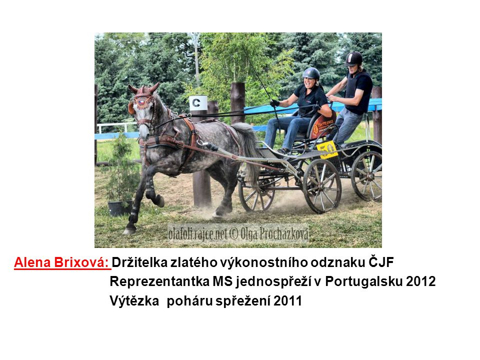 Alena Brixová: Držitelka zlatého výkonostního odznaku ČJF Reprezentantka MS jednospřeží v Portugalsku 2012 Výtězka poháru spřežení 2011