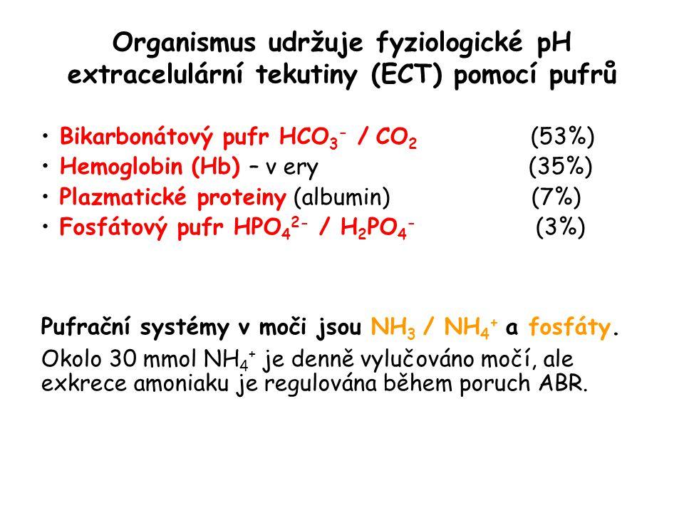 Organismus udržuje fyziologické pH extracelulární tekutiny (ECT) pomocí pufrů Bikarbonátový pufr HCO 3 - / CO 2 (53%) Hemoglobin (Hb) – v ery (35%) Pl