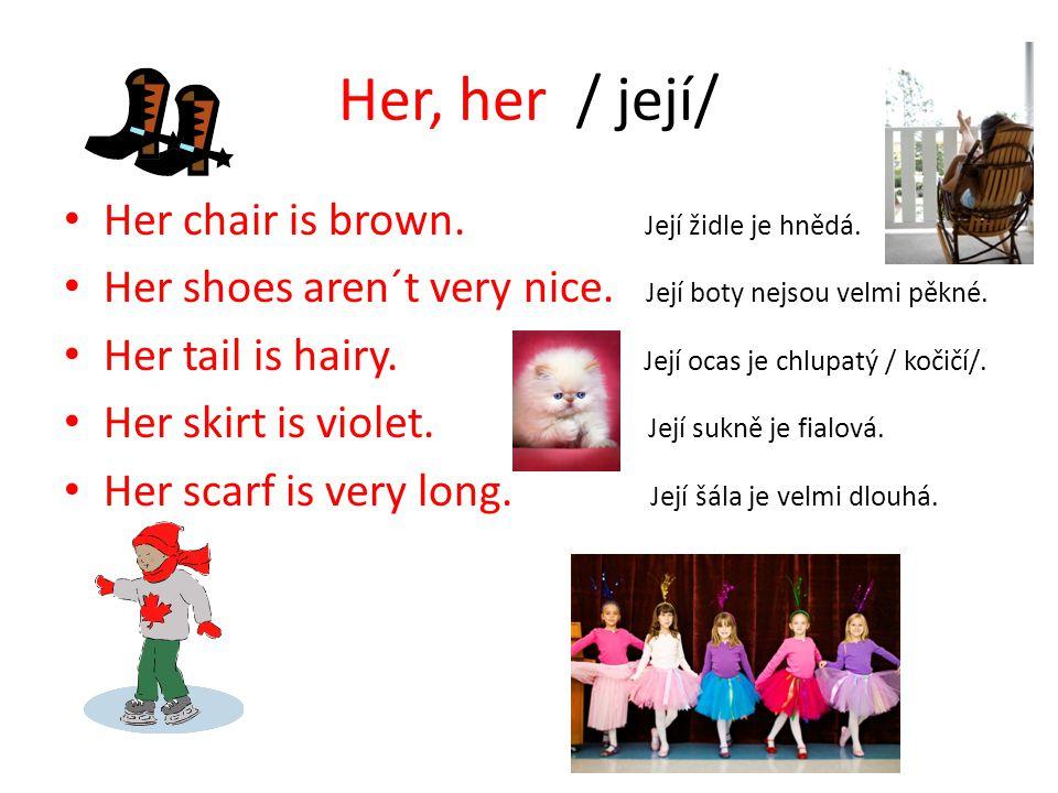 Her, her / její/ Her chair is brown. Její židle je hnědá. Her shoes aren´t very nice. Její boty nejsou velmi pěkné. Her tail is hairy. Její ocas je ch