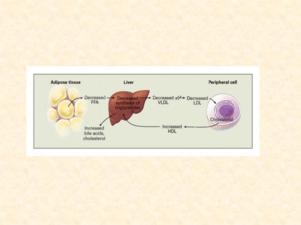 PRYSKYŘICE inhibice reabsorpce žluč. kyselin ve střevě -  konverze ch.na žluč. kys. -  LDL rec. synergní úč. se statiny I: kombinovaná hyperlipidémi