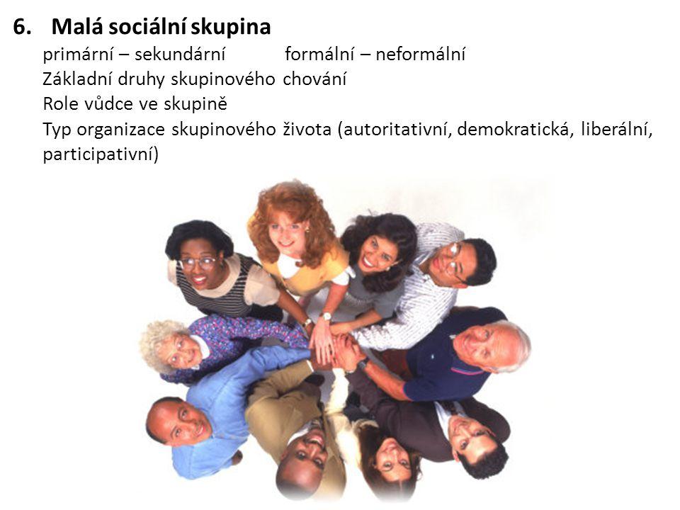 6.Malá sociální skupina primární – sekundárníformální – neformální Základní druhy skupinového chování Role vůdce ve skupině Typ organizace skupinového