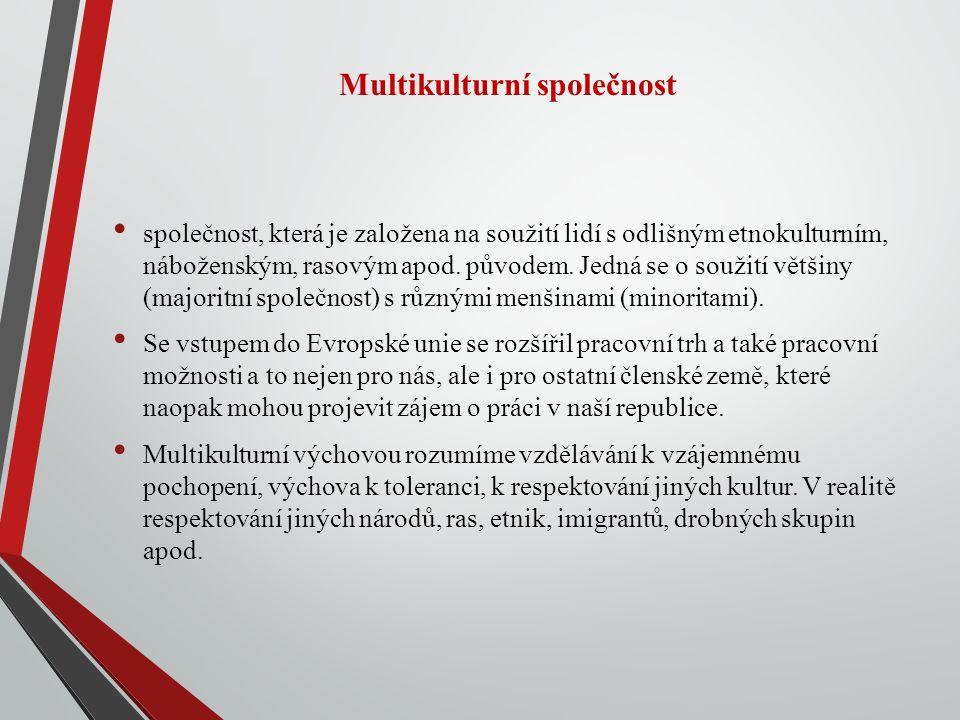 Multikulturní společnost společnost, která je založena na soužití lidí s odlišným etnokulturním, náboženským, rasovým apod.