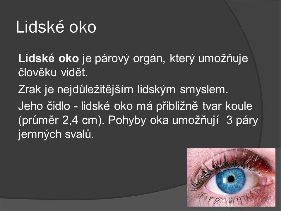 Lidské oko Lidské oko je párový orgán, který umožňuje člověku vidět. Zrak je nejdůležitějším lidským smyslem. Jeho čidlo - lidské oko má přibližně tva