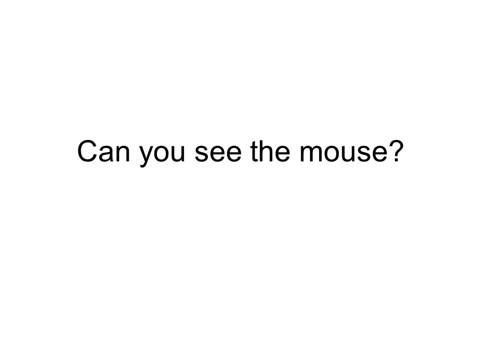 Can you see the mouse?