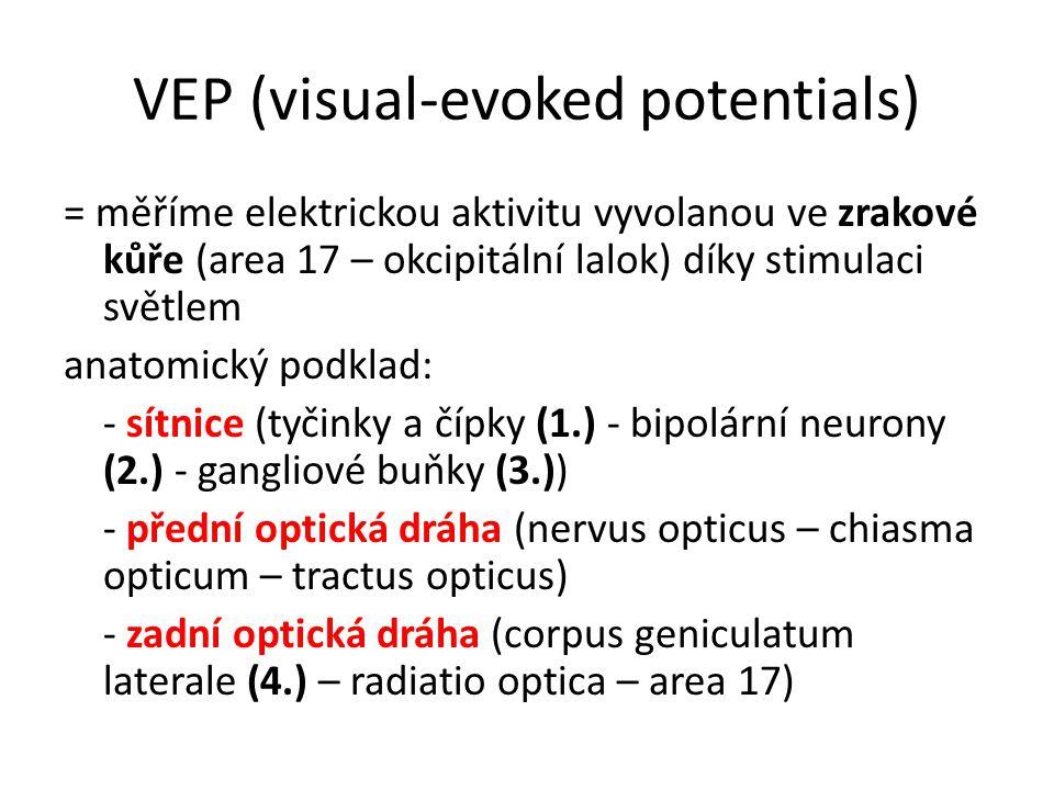 VEP (visual-evoked potentials) = měříme elektrickou aktivitu vyvolanou ve zrakové kůře (area 17 – okcipitální lalok) díky stimulaci světlem anatomický