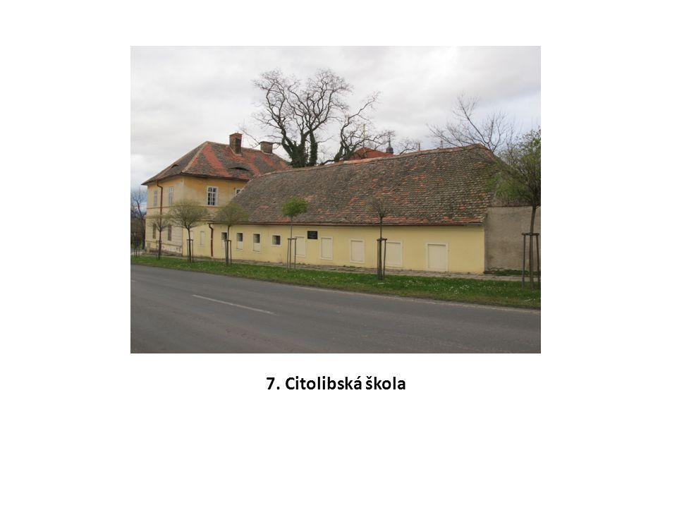 7. Citolibská škola