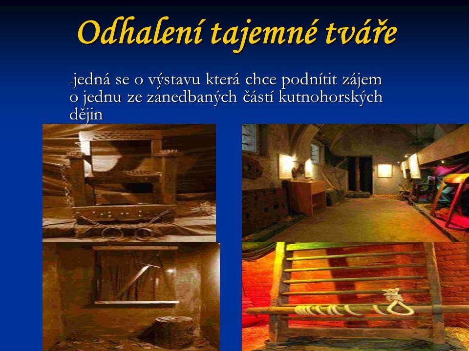Odhalení tajemné tváře - jedná se o výstavu která chce podnítit zájem o jednu ze zanedbaných částí kutnohorských dějin