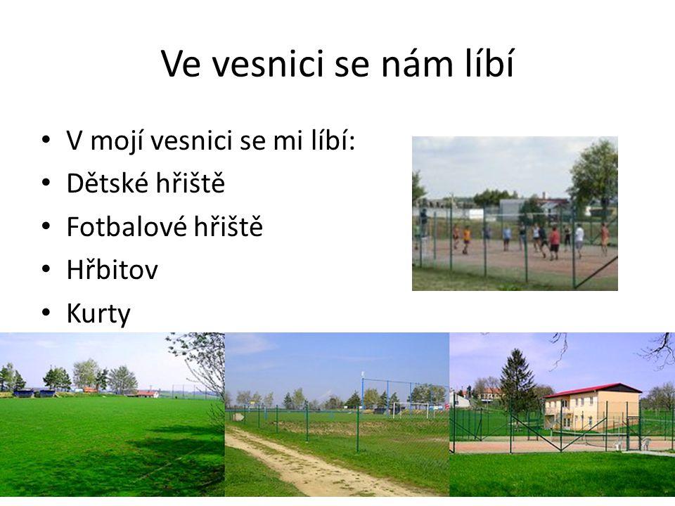 Ve vesnici se nám líbí V mojí vesnici se mi líbí: Dětské hřiště Fotbalové hřiště Hřbitov Kurty