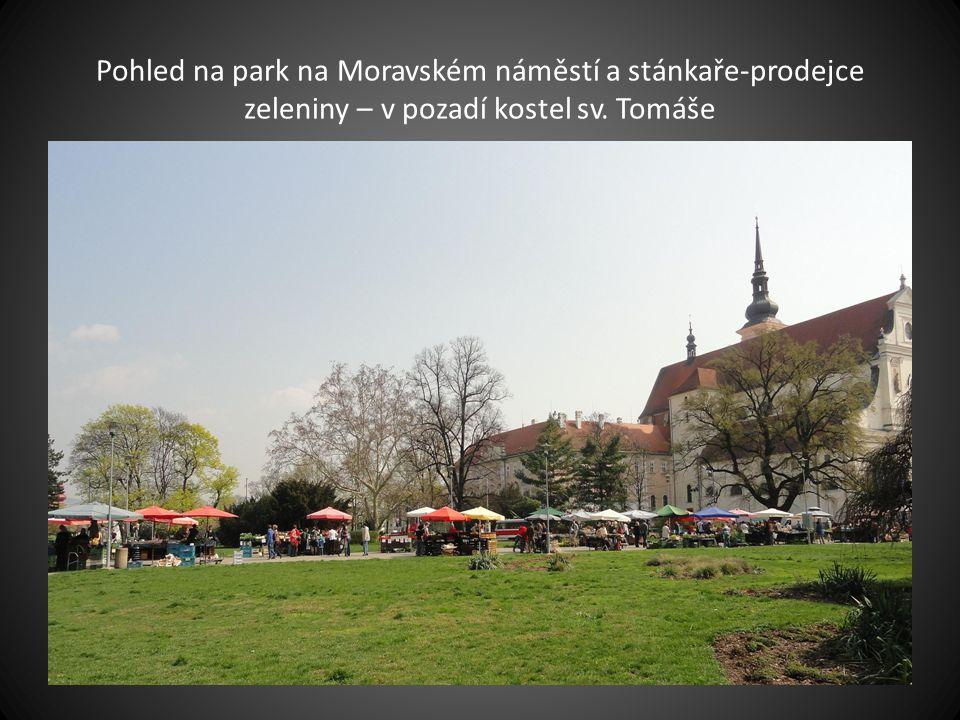 Pohled ze spodní části Zelného trhu v pozadí Moravské zemské muzeum a věže katedrály Petrova