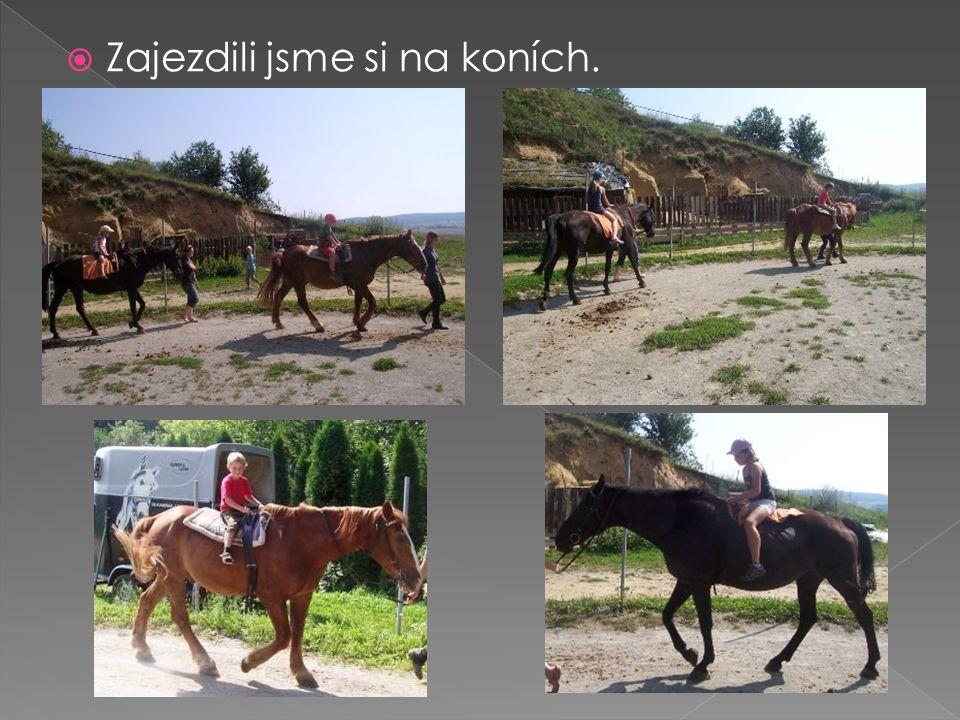  Zajezdili jsme si na koních.