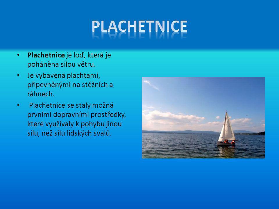 Plachetnice je loď, která je poháněna silou větru. Je vybavena plachtami, připevněnými na stěžních a ráhnech. Plachetnice se staly možná prvními dopra