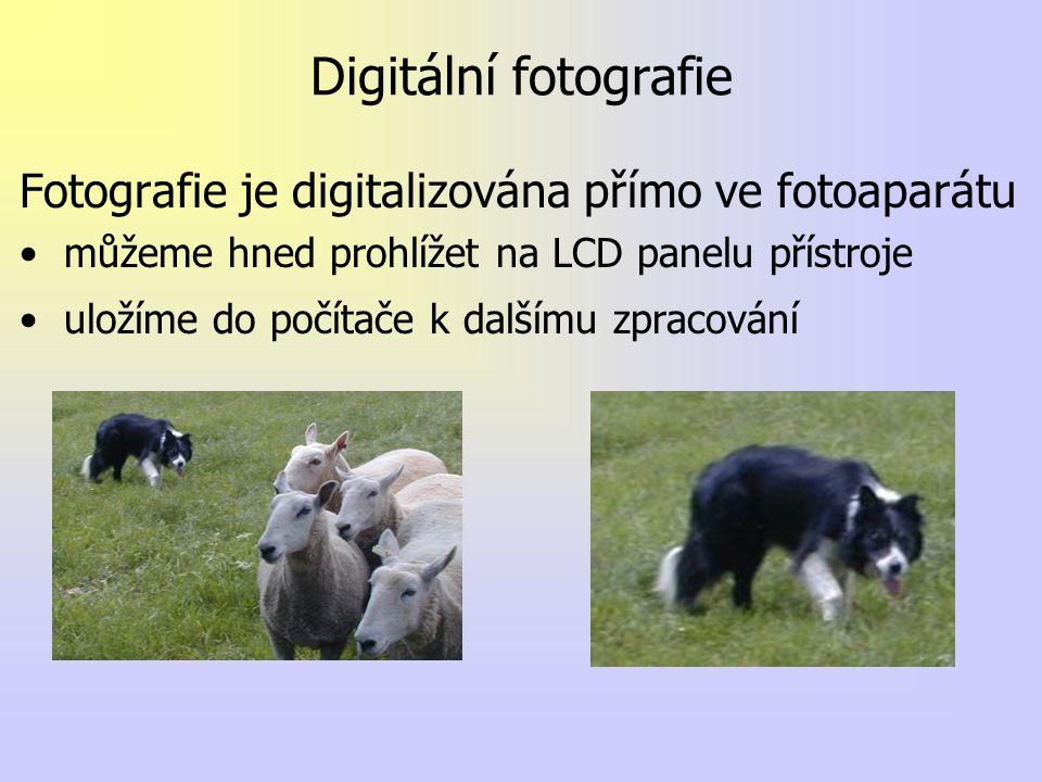 Digitální fotografie Fotografie je digitalizována přímo ve fotoaparátu můžeme hned prohlížet na LCD panelu přístroje uložíme do počítače k dalšímu zpr