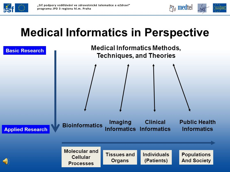 Basic Research Applied Research Medical Informatics Methods, Techniques, and Theories Imaging Informatics Clinical Informatics Bioinformatics Public Health Informatics Molecular and Cellular Processes Tissues and Organs Individuals (Patients) Populations And Society Medical Informatics in Perspective