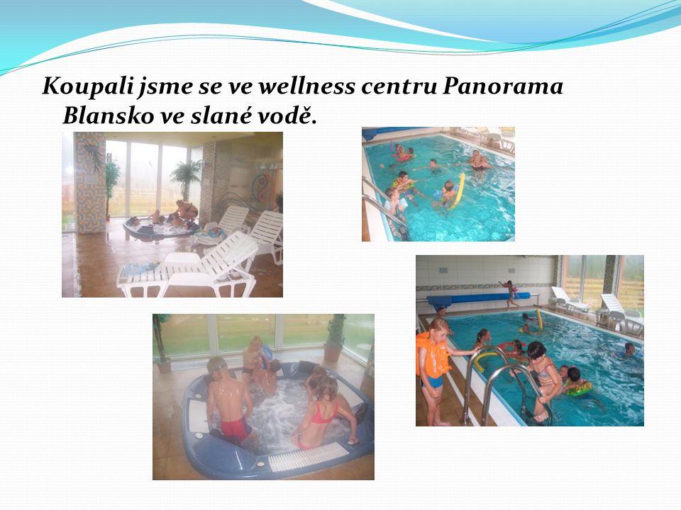 Koupali jsme se ve wellness centru Panorama Blansko ve slané vodě.
