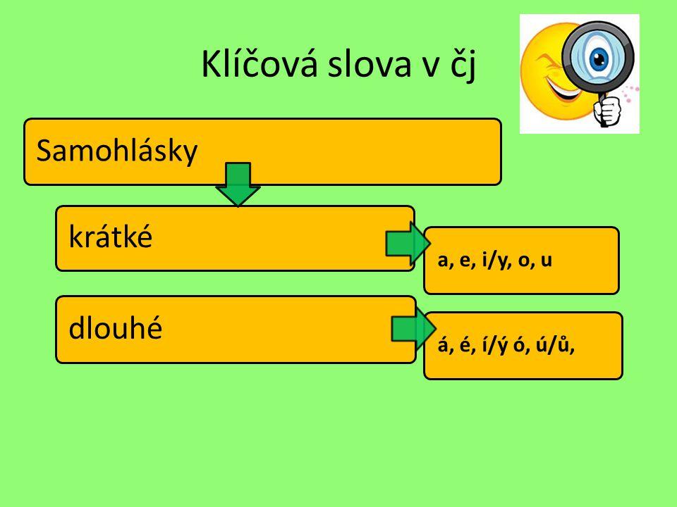 Klíčová slova v čj Souhlásky měkké tvrdé obojetné ž,š, č, ř, c, j, ď, ť, ň h, ch, k, r, d, t, n b, f, l, m, p, s, v, z