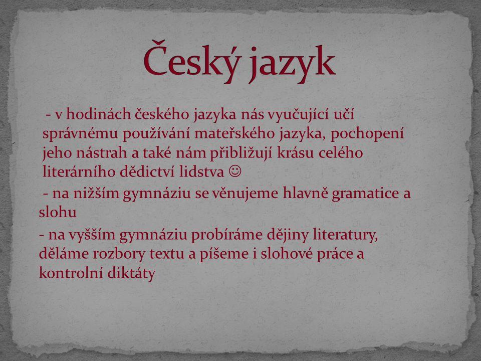 - v hodinách českého jazyka nás vyučující učí správnému používání mateřského jazyka, pochopení jeho nástrah a také nám přibližují krásu celého literár