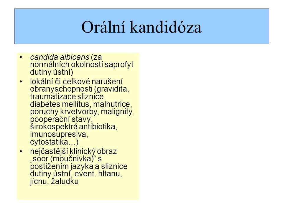 """Orální kandidóza candida albicans (za normálních okolností saprofyt dutiny ústní) lokální či celkové narušení obranyschopnosti (gravidita, traumatizace sliznice, diabetes mellitus, malnutrice, poruchy krvetvorby, malignity, pooperační stavy, širokospektrá antibiotika, imunosupresiva, cytostatika…) nejčastější klinický obraz """"soor (moučnivka) s postižením jazyka a sliznice dutiny ústní, event."""