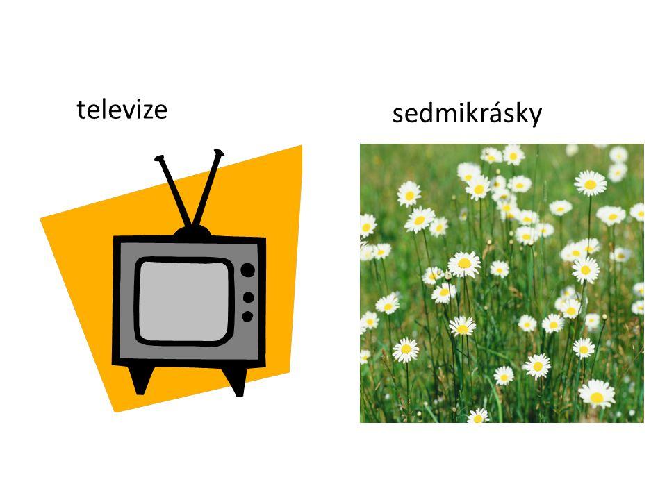 televize sedmikrásky