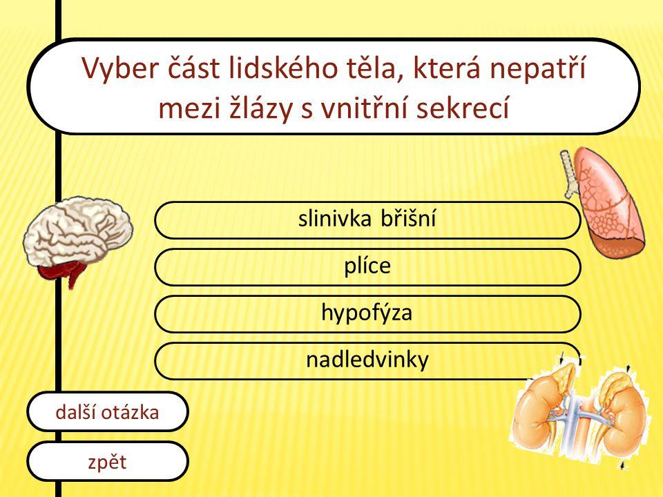 Vyber část lidského těla, která nepatří mezi žlázy s vnitřní sekrecí slinivka břišní plíce hypofýza nadledvinky zpět další otázka
