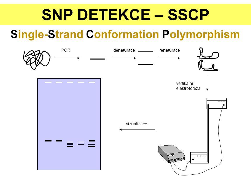 SNPs – hybridizační metody 500 000 lidských SNPs