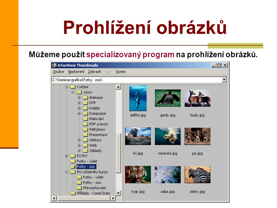 Prohlížení obrázků Můžeme použít specializovaný program na prohlížení obrázků.